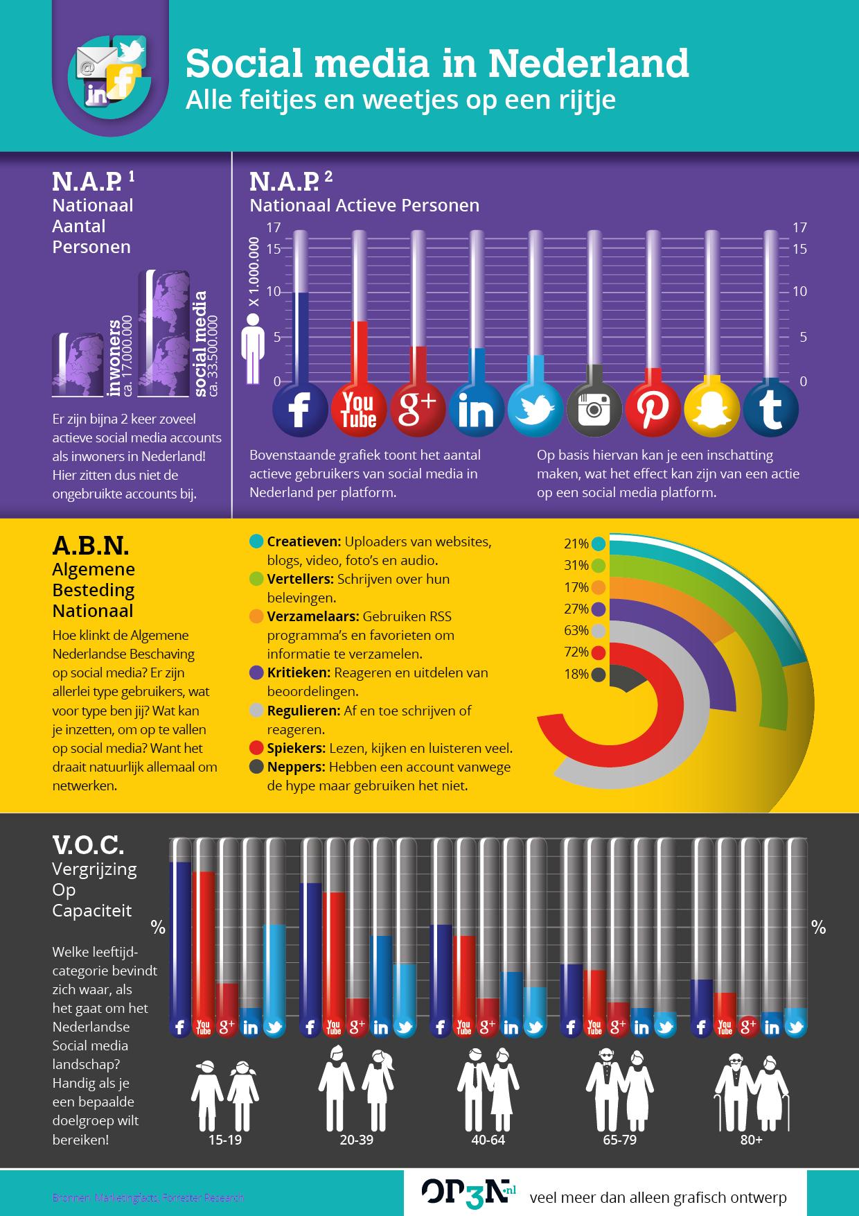 Social media in Nederland infogram